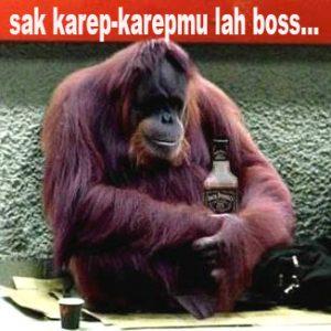 100 Gambar DP BBM Bahasa Jawa Kocak Lucu & Gokil 21