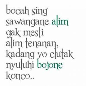 100 Gambar DP BBM Bahasa Jawa Kocak Lucu & Gokil 24