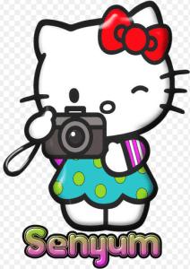 30 Gambar DP BBM Hello Kitty Lucu & Cantik 15