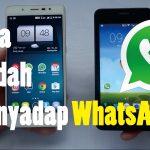 Cara Menyadap WhatsApp Dari Jarak Jauh Mudah & Cepat