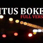 5 Rekomendasi Situs Bokeh full version 2019 Di HP